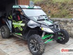 Arctic Cat Wildcat 1000i