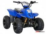 Èína ATV 125