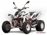 Access Motor Warrior 450