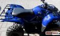 Detailní foto č.4 Yamaha Grizzly 300